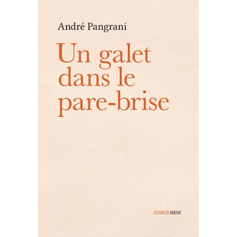LIVRE Un galet dans le pare-brise - André Pangrani