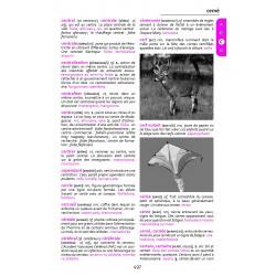 LIVRE Rakibolana mpianatra - dictionnaire des écoliers et collégiens