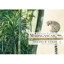 LIVRE Madagascar, Stupeur...